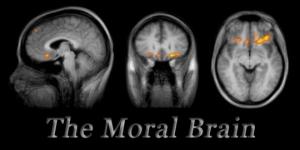 Moral Brain